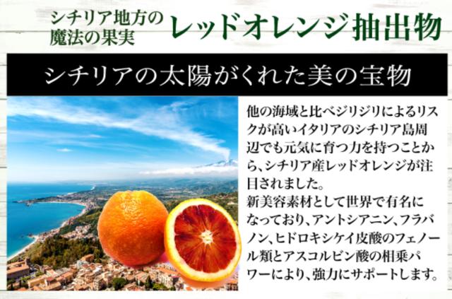レッドオレンジ(1425).png